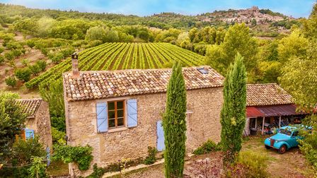 Ever thought about purchasing a vineyard? (c)Cheryl Ramalho/Getty Images