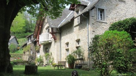 The house in Correze and Mortimer the labradoodle