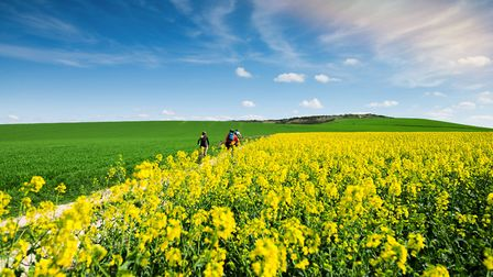 Explore the French countryside by bike (c) debove sophie / Getty Images