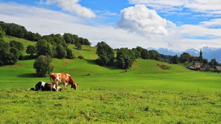 The sounds and smells of the French countryside are protected © kavram Getty Images