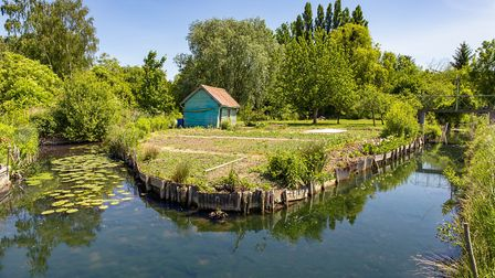 Amiens' glorious floating gardens. Pic: Cristian Gheorghe/Getty