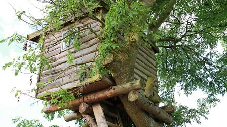 A treehouse would need planning permision (c) Canetti / Getty Images