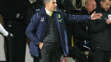 Will Norwich City manager Chris Hughton strengthen his squad further before the end of the transfer