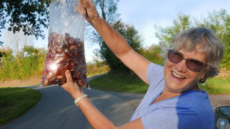 Jude Cranmer and her chestnuts. Pic: Michael Cranmer