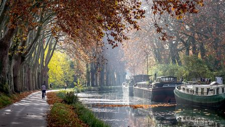 The Canal du Midi in its autumn glory is our FRANCE Calendar October star. Pic: Yvon52/Getty