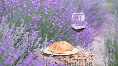 Lavender, croissants and vin rouge - the ideal trio. Pic:Kotkoa/Getty