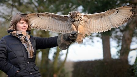 The birds under the care of Mark Christian of Norfolk Falconry in Beetley - Reporter Rosa McMahon fe