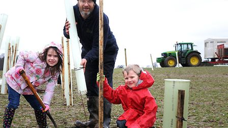 St Michael's Nursery and Infant School pupils helping plant trees at Hainford burial park. Phoebe Pa