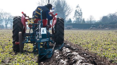 A virtual online ploughing match has been organised following the cancellation of traditional farm c