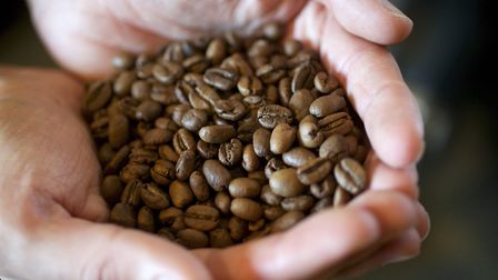 Coffee beans at Grey Seal coffee in north Norfolk. Picture: MARK BULLIMORE