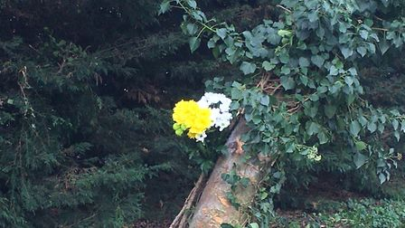 A floral tribute has been left at the scene of a fatal crash on Hargham Road in Shropham, near Attle
