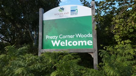 Pretty Corner Woods has reopened to the public. Picture; Archant
