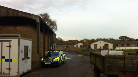 One of the county's largest cannabis farms was discovered at Gibbett Site Pig Farm in Hale Road, Br