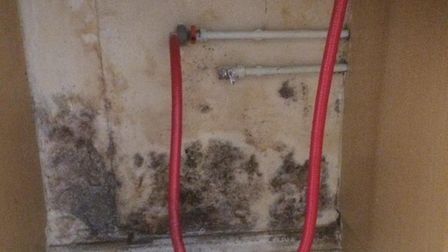 Damp on a wall behind the washing machine at 15 St Martins Road, Norwich. Photo: Sophie Housden