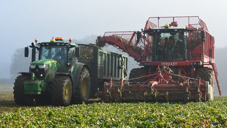 The future of East Anglia's sugar beet industry will be one of the topics discussed at a series of v