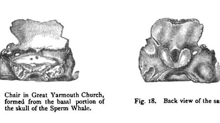 The Devil's Seat in Great Yarmouth. Illustration from The seals and whales of the British seas By Th