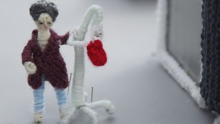 One of the patients featured in knitter Margaret Seaman's Knittingale Hospital. Picture: DENISE BRAD