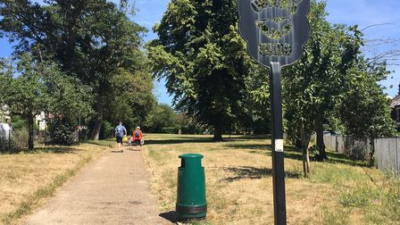 Drunk man Stacey Roach found with genitals exposed in Norwich park. Picture: SOPHIE WYLLIE