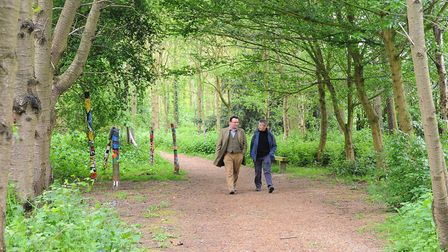 Burlingham Woodland Walks which has a variety of routes for all abilities Picture: Denise Bradley