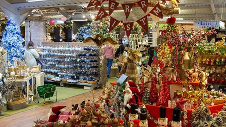 Thetford Garden Centre opened their Christmas department a week early. Picture: SOPHIE STOGDON