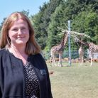 Claudia Roberts, managing director of the Commercial, Zoological Society of East Anglia Picture: Su