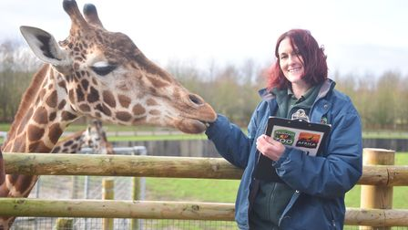 Hand feeding animals has been banned at Banham Zoo and Africa Alive to keep animals safe from Covid. Pictured pre-Covid.