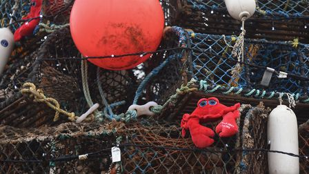 Crabs and fenders on the crab pot Christmas tree built by the local fishermen at Wells-Next-the-Sea