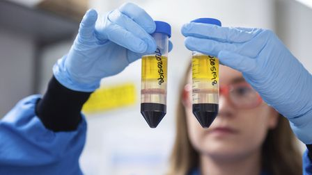A researcher in a laboratory at the Jenner Institute in Oxford works on the coronavirus vaccine deve