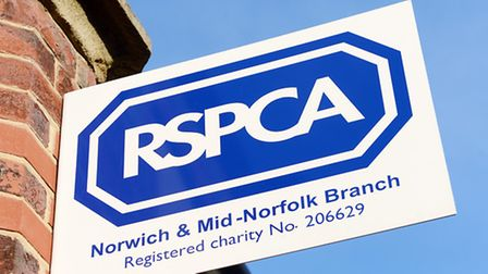 The RSPCA logo on one of its shops at Fakenham. Picture: Matthew Usher.