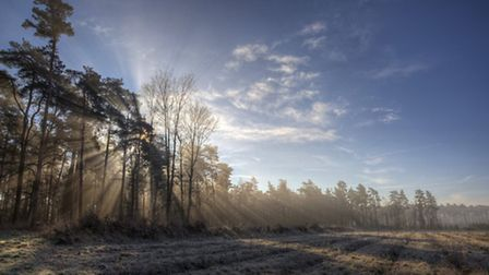 The Brecks. Photo: Nick Ford.