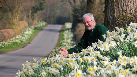 The Rev Barry Furness with Honing Long Lane's mile of daffodils.PHOTO: ANTONY KELLY