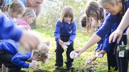 Pupils for Howards Infants and Junior School plant poppy seeds at Plantation WWI. Picture: Matthew U