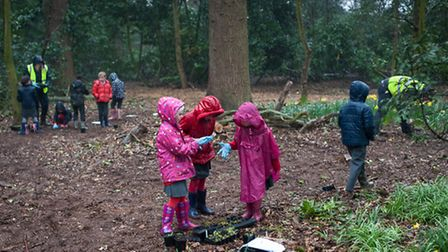 Children planting wildflowers in the pouring rain at Cringleford. Photo: Bill Smith