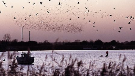 Roaming in the gloaming – as dusk fell on Oulton Broad, amateur photographer and Waveney council lea