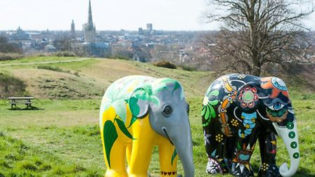 Decorated elephants Lilly Pepper and Party Garden visited landmarks in Norwich ahead of an Elephant