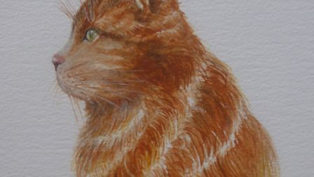 One of Pamela Dickerson's artworks to tie in with the arrival of the musical Cats to Norwich Theatre