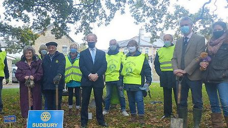 The planting was to mark World Polio Day Picture: SUDBURY ROTARY CLUB