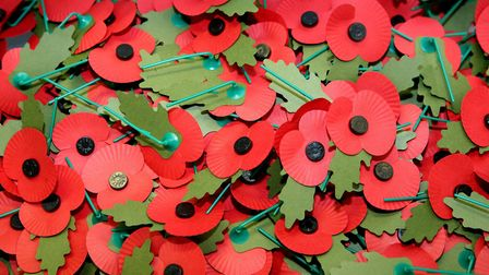 Poppies can still be bought despite changes to Remembrance Commemorations this year. Picture: Katie Collins/PA