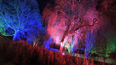 The Spectacle of Light at Haughley Park. Picture: Neil Didsbury