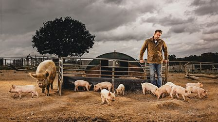 Jimmy Doherty with his pigs Picture: SAM RILEY