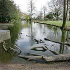 The moat at Valence park