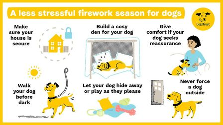 Advice from the Dogs Trust on how to help your pet