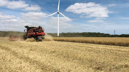A wind turbine turns as crops are harvested at David Lord's farm in Clacton-on-Sea Picture: DAVID L