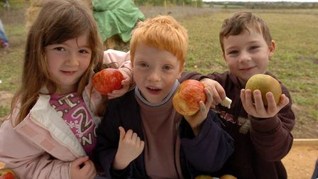 Apple Day at High Woods Country Park, Colchester, in 2007 Picture: CLIFFORD HICKS/ARCHANT