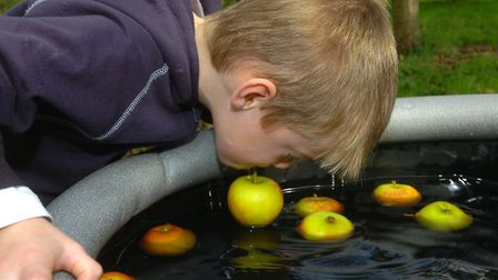 Bobbing for apples at the Holywells Park Apple Day in Ipswich in 2006 Picture: SIMON PARKER/ARCHANT