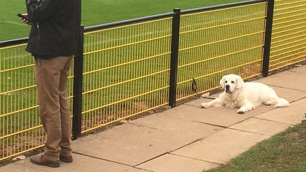 A dog's life: This shaggy supporter has the right idea during a goalless first-half at Loughborough