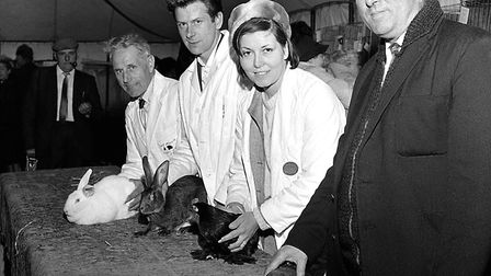Rabbit exhibitors pictured at the 1969 Hadleigh Show. Picture: ARCHANT