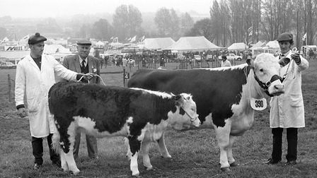 Prizewinners at the Hadleigh Show in May 1986 Picture: ARCHANT