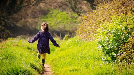Which National Trust sites will be staying open during the second lockdown in Suffolk? Picture: FIELD STUDIES COUNCIL