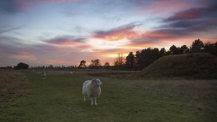 Sunset over the mound at Sutton Hoo. Picture: NATIONAL TRUST IMAGES/ROBIN PATTINSON